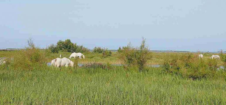 Comment choisir un terrain à acheter dans les Bouches du Rhône ?